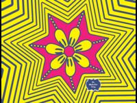 Starry 🌟