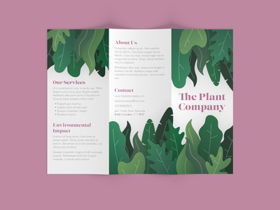 Plant Company brochure illustraion plants mockup trifold brochure