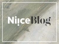 Niice Blog