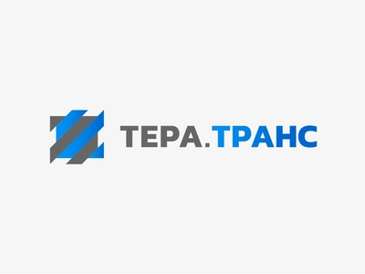 Tera.trans grey blue letters identity logotype brand branding logo