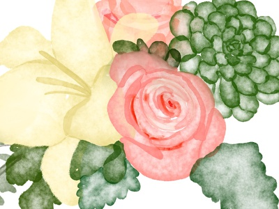 Watercolor Botanicals floral graphic illustration foliage lilly rose flowers drawing procreate watercolor