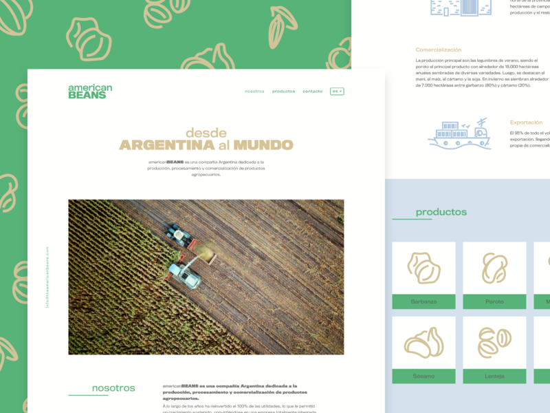 americanBEANS - Landing Page agriculture icon website web ux ui sketch landing interface illustration design