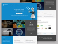 Principa homepage redesign