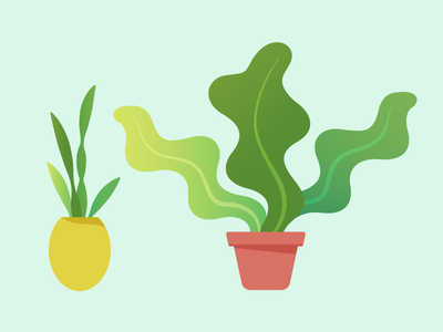 Plants  vector icons digital leaf design color plant illustration gradient