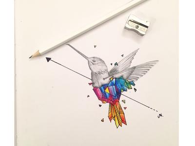 Hummingbird Geometrics