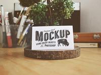 Business Card Mock-Up Freebie
