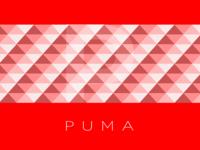 Puma Concept