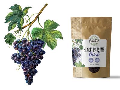 Dried fruits packaging serie - raisins