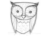 Sketch Owl