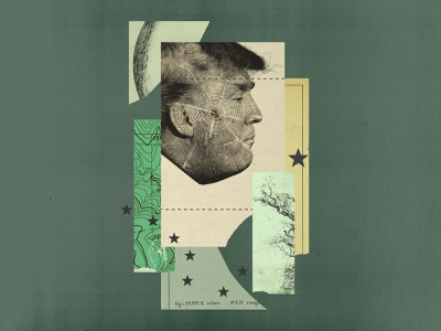Trump vs. Tongass Forest paper stars forest trees topographic map topography trump collage