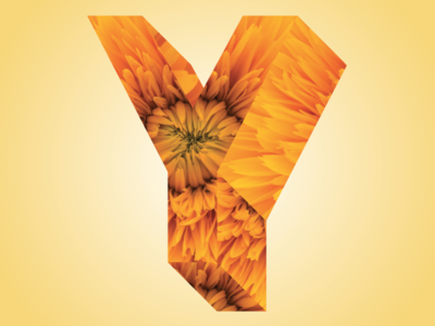 Phreaky Photo-Letters: Y for Yellow