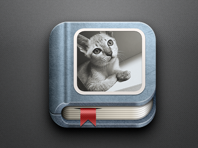 Photo Album Icon gallery photo album book ios icon app