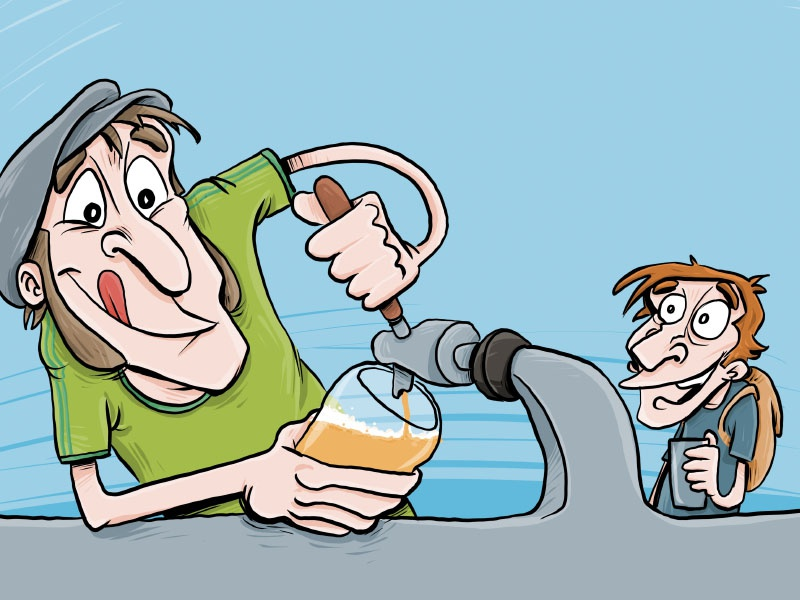 Festimalt Illustration illustration beer draw