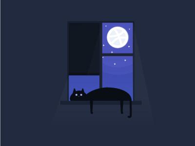 Hello dribbble window night cat dribbble hello