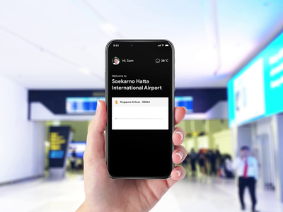 AR Airport Guide