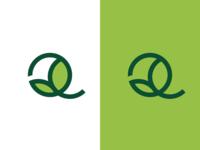 Q + Leaf/Growth