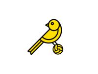Canary + Football