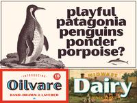 Oilvare Posters