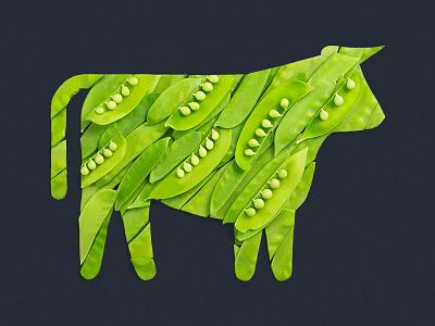 Pea Protein beyond meat cow peas vegetable icon pea beef steve bullock