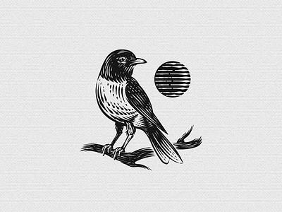 Canadian Robin retro vintage electrical illustration sun plumbing bird robin