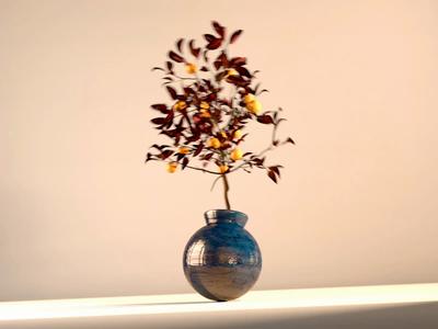 Shake the orange tree