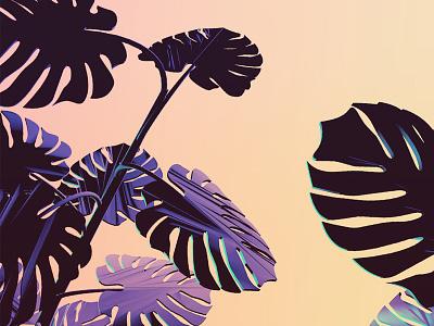 Split Leaf Philodendron plant c4d cgi render 3d cinema 4d relaxing neon illustration plants
