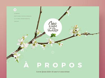 PHL Homepage Header art direction webdesign