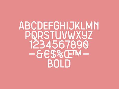 Skdr Bold custom typeface type type design font fre lemmens eskader