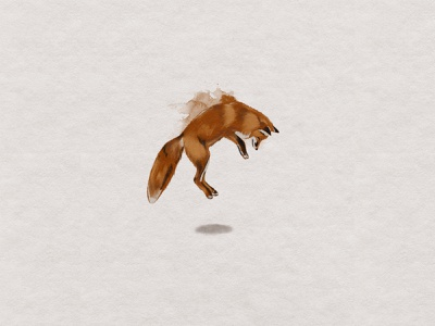 Fox fox design watercolor illustration watercolor fox illustration fox custom handmade hand drawn illustration design