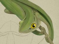 Bell-tail Miniature Dragon