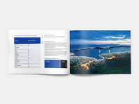Ior annual report