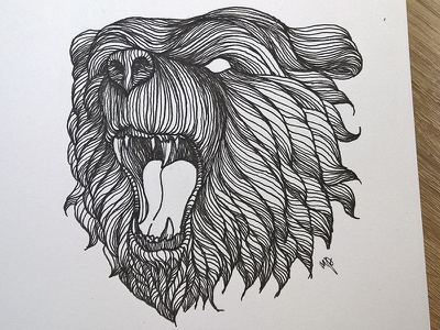 Bear illustration ink art graphic lineart illustration drawing detailed bear