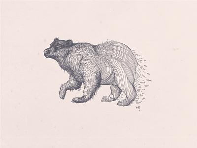 Mad Nature Volume I identity brand logo bear illustration design graphic
