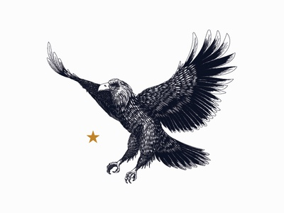 Mighty Eagle  intricate detailed american eagle flying bird illustration mature classic construction design logo