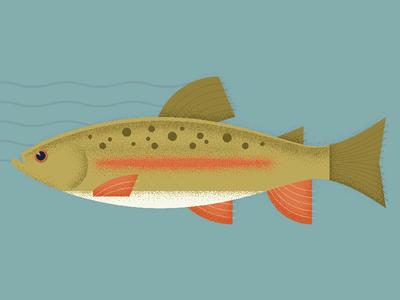 Trout Illustration grain texture vintage fish trout illustration