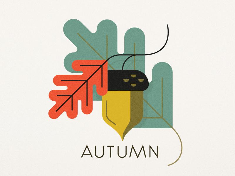 Autumn Aesthetic autumn fall design illustration texture grain acorn leaves leaf oak