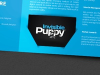 Invisible puppy