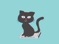 The secret life of Cat