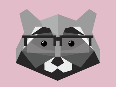 Raccoon Ross