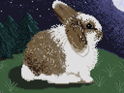 Sweet Buddy Bunny! Day #3