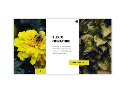 Elixir Of Nature beauty logo brown blue green yellow home page nature uidesign