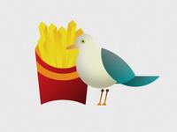 Delightful Seagull