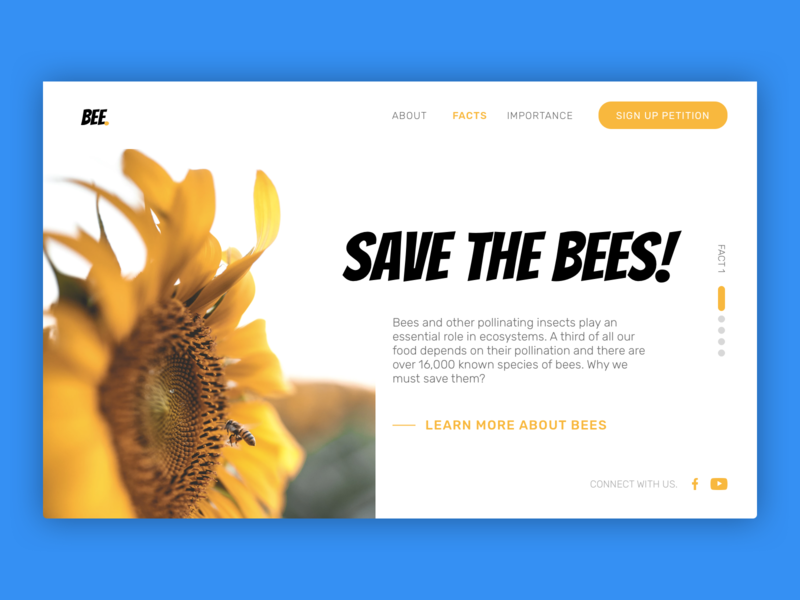 Hero image - Save the bees sunflower conservation bees bee sketchapp design ui landing page web design uiux hero image