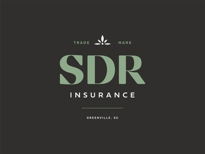 SDR Insurance: Unchosen concept unchosen clean insurance company insurance custom type identity branding icon logo type typography color vector design