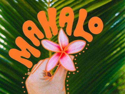 Mahalo Hawaii procreate app procreate ipad thank you love island hawaii hand letteriing lettering illustration type typography color vector design