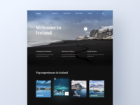 Iceland - Travel Website