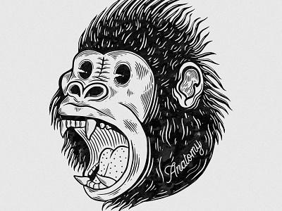 Gorilla Illustration design vector branding brand logo graphic design vintage illustrator digital art illustration