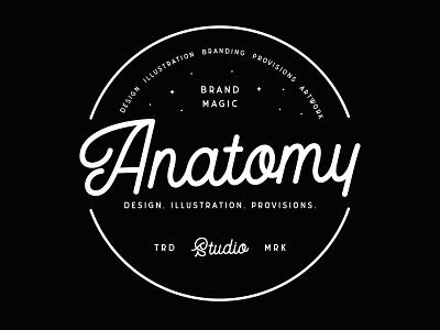 Anatomy Logo Design vector badge vintage identity design typography logo brand branding graphic design