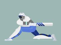 🏏 Cricket Player 🏏