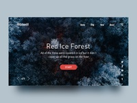 Web Page - Red Ice Forest